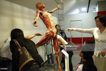 Triển lãm cơ thể người ở quốc tế: Bị chỉ trích phi đạo đức